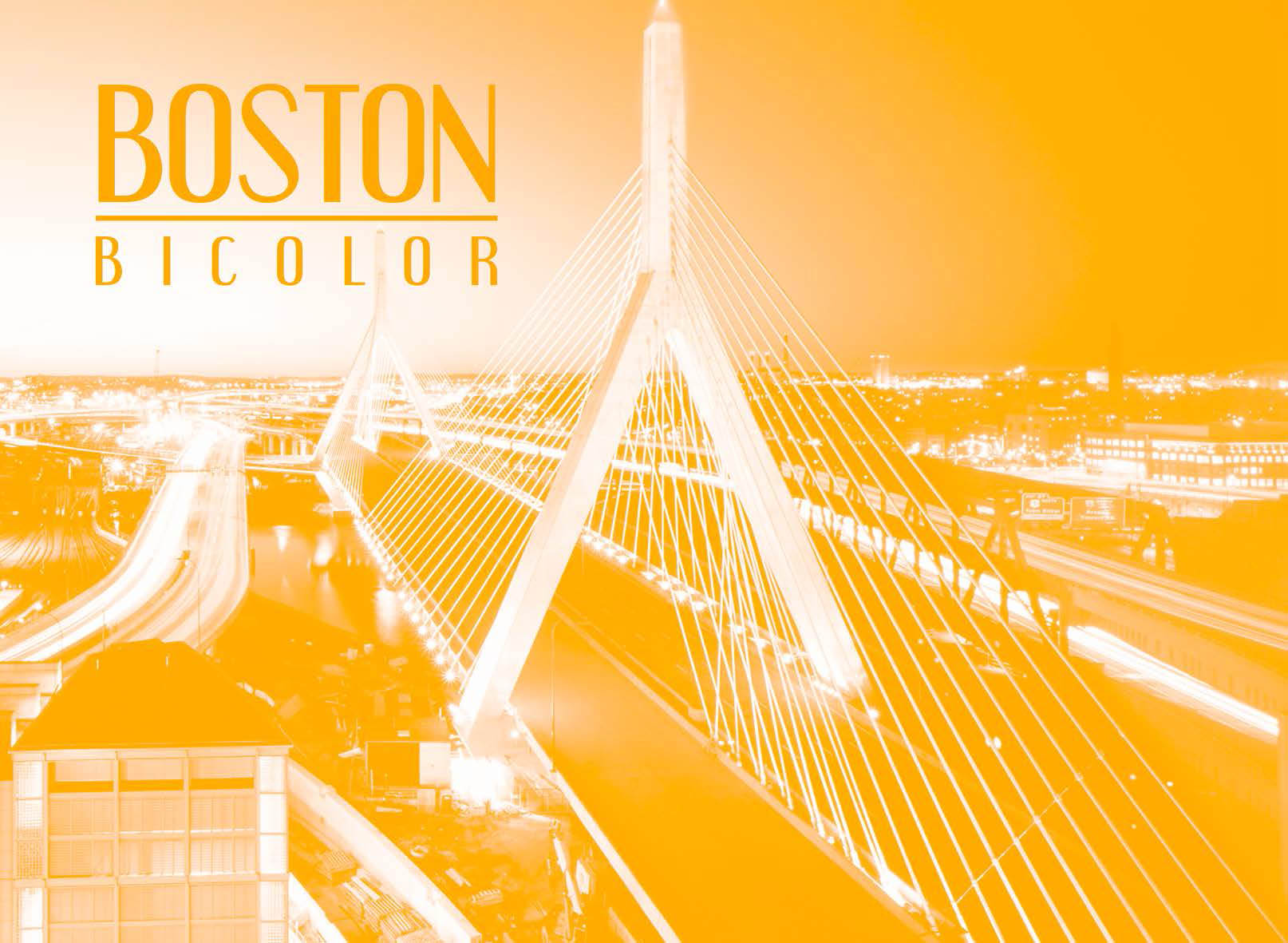 boston bicolor
